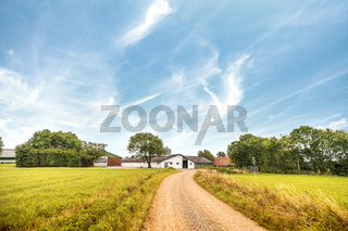 Road going up to a farm in a rural landscape