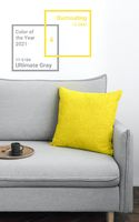 The color of the year 2021 in scandy interior