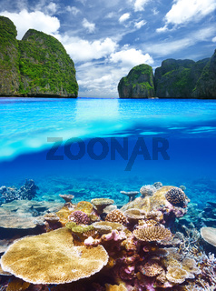 Lagoon with coral reef underwater view