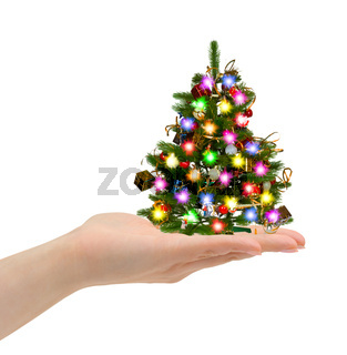 Christmas tree in hand