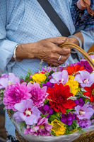 Old chinese woman selling flowers