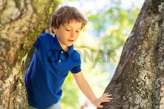 happy little boy climbing tree at park