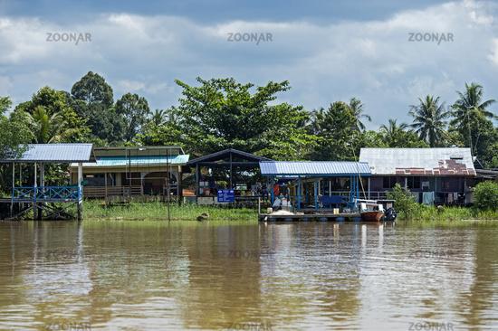 Dorf Abai (Abai village) am Ufer des Kinabatangan Flusses