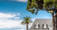 Palm tree and Hotel Blanc on blue sky
