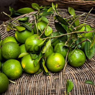 Fresh organic green orange fruits