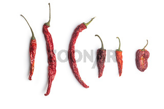 Dried red chili peppers.