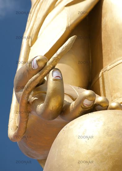 Buddha`s hand with lotus flower