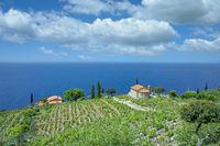 Island of Elba,Tuscany,Italy
