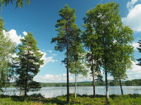 Lake landscape in Varmland in Sweden