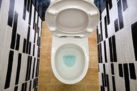 opened white toilet