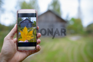 Mobile phone with picture of autumn maple leaf taken against view of wooden cottage