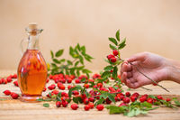 Hand holding rosehip twig with red berries and flask full of oil in background
