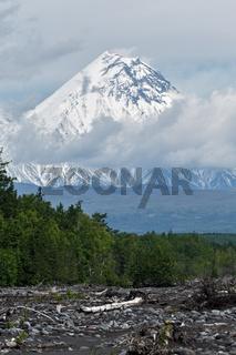 Summer view of Kamen Volcano. Kamchatka Peninsula, Russian Far East