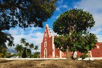 Red colonial church Itzimna in a park framed by trees, Merida, Yucatan, Mexico