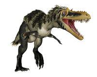 Alioramus dinosaur roaring - 3D render