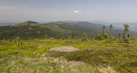 On the summit of the Grosser Arber
