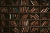 Paper books on wooden bookshelves. Library concept. Abstract retro background or wallpaper. Tinted image. High quality photo