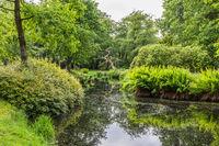 Pond in Luetetsburg castle garden, East Frisia, Lower Saxony, Germany