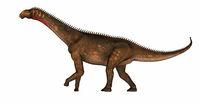 Mierasaurus dinosaur - 3D render