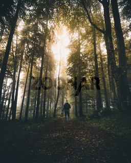 man walking on a path in a strange dark forest with fog