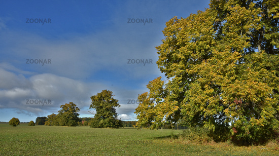 autumn landscape, swabian alps, germany