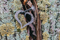 forged heart and nail love concept
