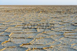 Wabenförmige Ablagerungen aus Steinsalz auf dem Assale Salzsee