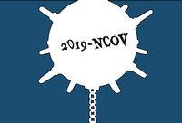Virus as a naval mine. Novel Wuhan coronavirus 2019-nCoV epidemic outbreak