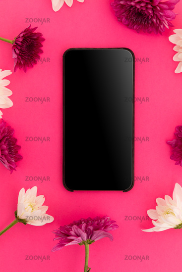 Smartphone with blank screen and pink and white flowers on pink background