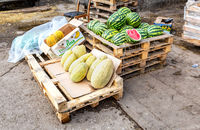 Fresh watermelons and melons saling at the farmers market
