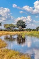 African landscape, Bwabwata, Namibia
