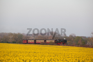 Harzer Schmalspurbahn Selketalbahn Harz
