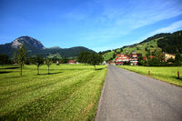 Mountains in switzerland, green grass and swiss house