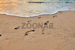Ffootprints of adult and child on the beach