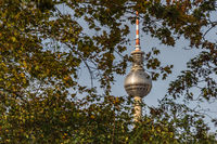 Berlin television tower in autumn with yellow leaves in the foreground