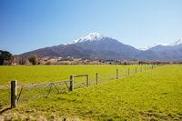 Landscape Around Staveley in New Zealand