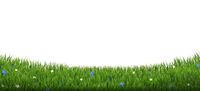 Green Grass Border With Flowers And Sun Isolated White Background