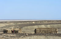 Huts of the Afar ethnic group in the Danakil Depression, Afar Triangle, Ethiopia