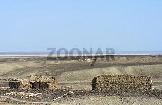 Hütten der Afar Volksgruppe in der Danakil Depression, Afar Dreieck, Äthiopien
