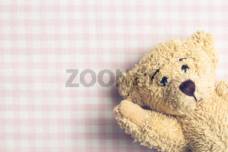 teddy bear on checkered background