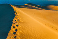 The chains of footprints in the sand