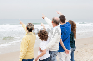 Back view of beautiful family on vacation
