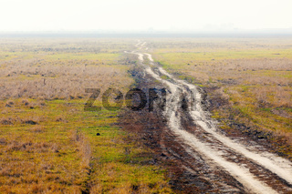 misty road to nowhere in Hungarian puszta