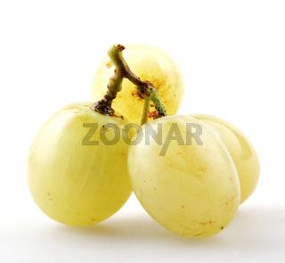 White table grapes against white background