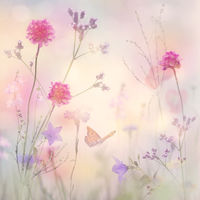 Pastel Floral background, soft focus