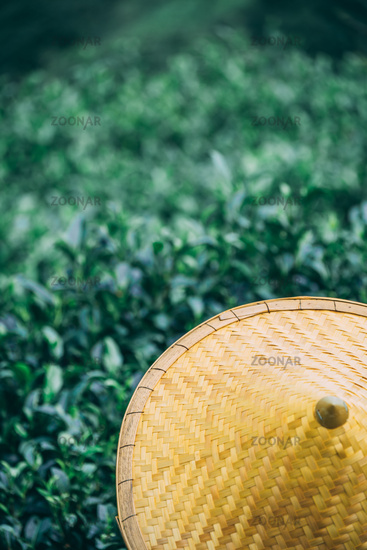 Beautiful closeup of an Asian conical hat against a foliage forest and mountains