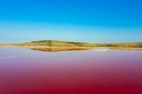 Pink lake Chokrak in Crimea