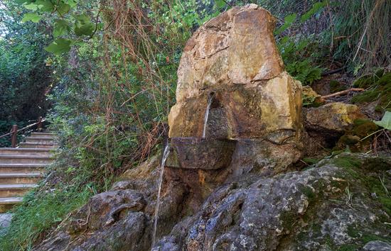 Aphrodite nature trail to Baths of Aphrodite in the Botanical garden on Akamas Peninsula.  Cyprus