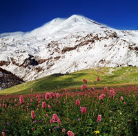 View on mountain Elbrus.