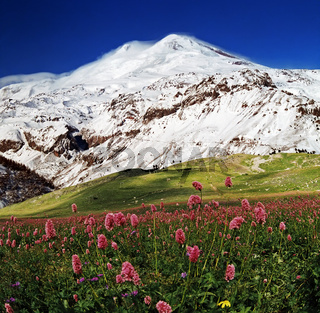 View on mountain Elbrus.